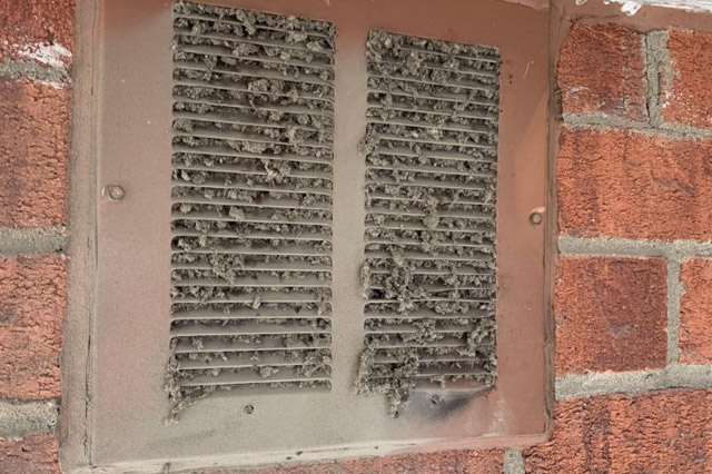 How Much Does Dryer Vent Cleaning Cost?