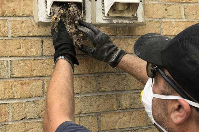 How Is Duct Cleaning Performed? Everything You Need to Know